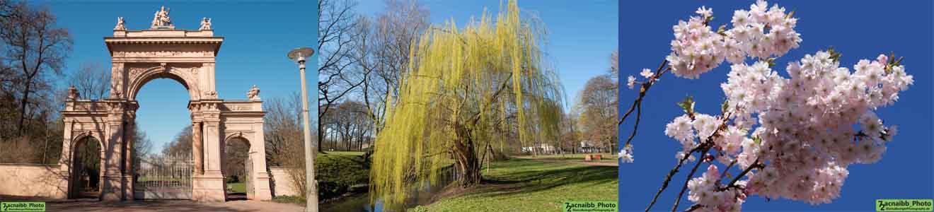 Bürgerpark (Bezirk Pankow)