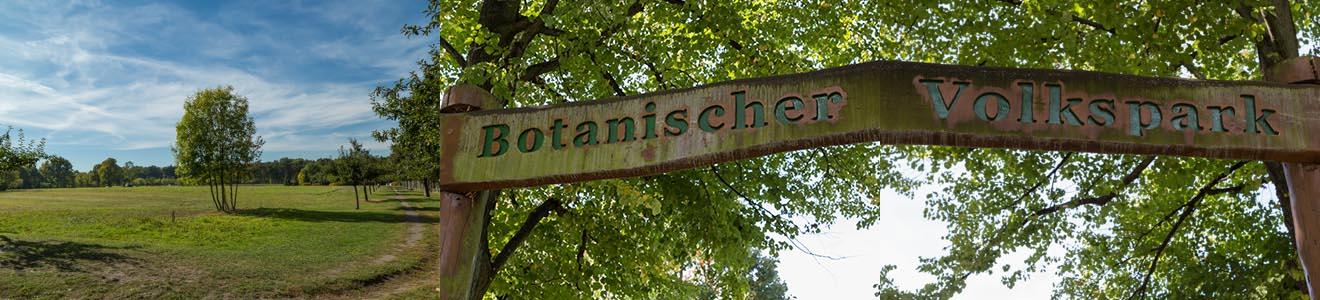 Botanischer Volkspark Blankenfelde-Pankow (Bezirk Pankow)