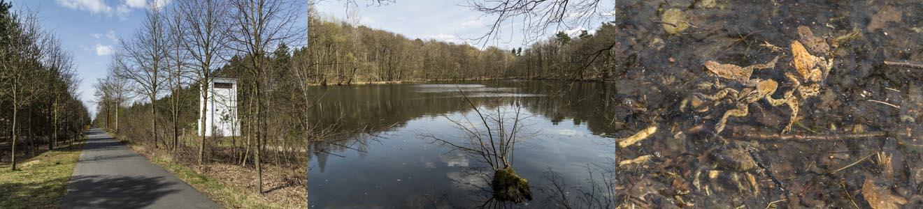Hubertussee und Mauerweg (Bezirk Reinickendorf)
