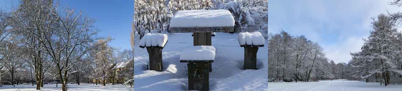 Kienhorstpark im Schnee vor einem Jahr (Bezirk Reinickendorf)