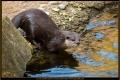 15_ZoologGartenBerlin_IMG_1429_k