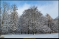 Kienhorstpark im Schnee