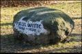 Gedenkstein für Paul Witte (Sohn des Namensgebers für Wittenau und Gemeindevorsteher)