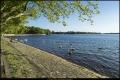 Tegeler See (Berlin-Reinickendorf)