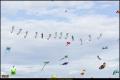 15_TempelhoferFeld_2015-09__B5D1197_K